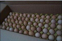 天津农产品配送平台