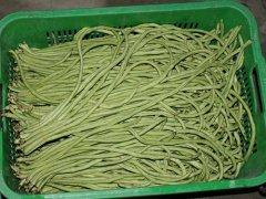 天津有机蔬菜礼盒配送